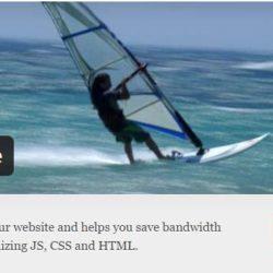 plugin wordpress minificar html css y js